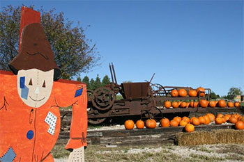 Pumpkins and Fun are both in abundance at Pleasant Ridge Farm in Rantoul, Kansas